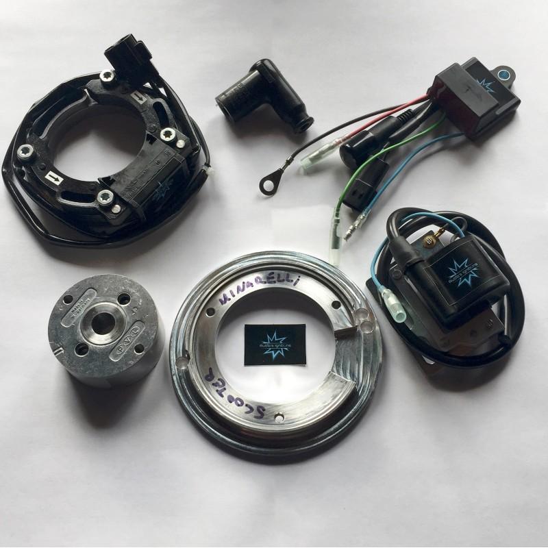 il rotore nell'immagine è puramente indicativo e potrebbe non essere quello riferito al motore in descrizione