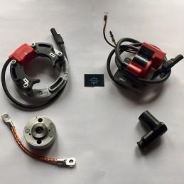 n.b. il rotore nell'immagine è puramente indicativo e potrebbe non essere quello riferito al motore in descrizione