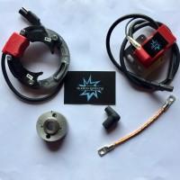 SELETTRA KZ Analogica - 3200w - Rotore 200GR